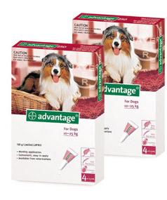 Advantage®